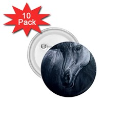 Equine Grace  1 75  Button (10 Pack)