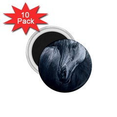 Equine Grace  1.75  Button Magnet (10 pack)