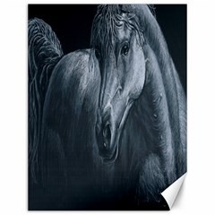 Equine Grace  Canvas 12  X 16  (unframed)