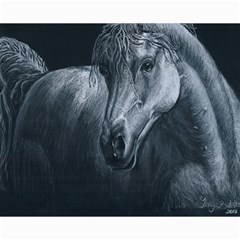 Equine Grace  Canvas 16  x 20  (Unframed)