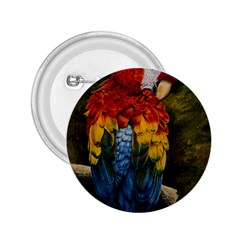 Preening 2.25  Button
