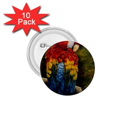 Preening 1 75  Button (10 Pack)