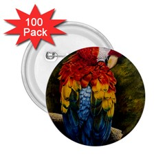 Preening 2.25  Button (100 pack)