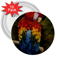 Preening 3  Button (10 Pack)
