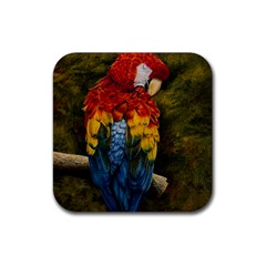 Preening Drink Coaster (square)