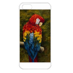 Preening Apple Iphone 5 Seamless Case (white)