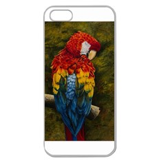 Preening Apple Seamless Iphone 5 Case (clear)