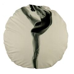 Attitude 18  Premium Round Cushion