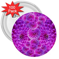 Purple Dahlias 3  Button (100 pack)