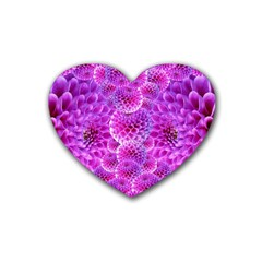 Purple Dahlias Drink Coasters (Heart)