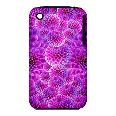 Purple Dahlias Apple iPhone 3G/3GS Hardshell Case (PC+Silicone)