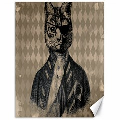 Harlequin Cat Canvas 18  x 24  (Unframed)