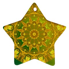 Yellow Green Abstract Wheel Of Fire Star Ornament (Two Sides)