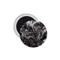 Snowy Trees 1 75  Button Magnet