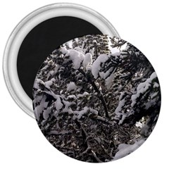 Snowy Trees 3  Button Magnet