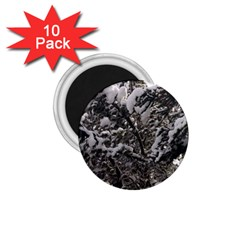 Snowy Trees 1.75  Button Magnet (10 pack)