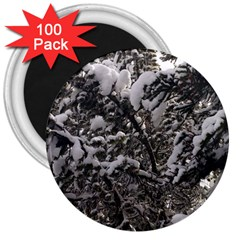 Snowy Trees 3  Button Magnet (100 pack)