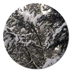 Snowy Trees Magnet 5  (Round)