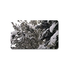 Snowy Trees Magnet (Name Card)