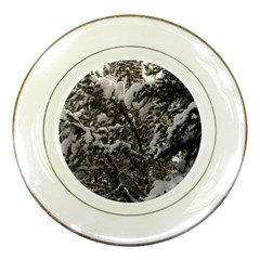 Snowy Trees Porcelain Display Plate