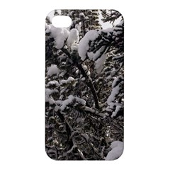 Snowy Trees Apple Iphone 4/4s Premium Hardshell Case