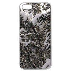 Snowy Trees Apple Seamless Iphone 5 Case (clear)