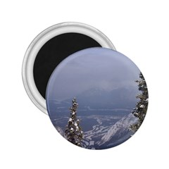 Trees 2 25  Button Magnet