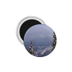 Trees 1.75  Button Magnet