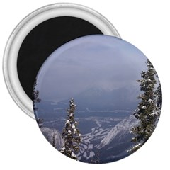 Trees 3  Button Magnet