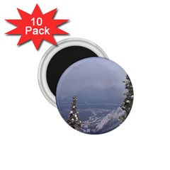 Trees 1.75  Button Magnet (10 pack)
