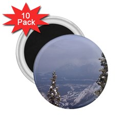 Trees 2 25  Button Magnet (10 Pack)