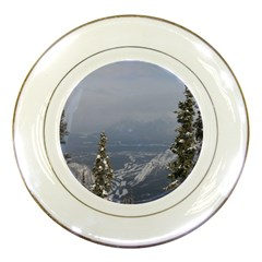 Trees Porcelain Display Plate