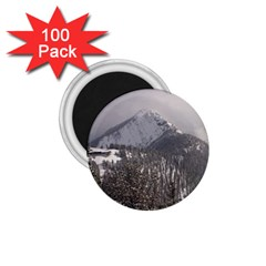 Gondola 1 75  Button Magnet (100 Pack)