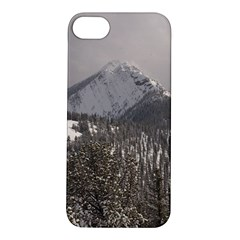 Gondola Apple iPhone 5S Hardshell Case