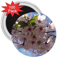 Sakura 3  Button Magnet (100 pack)
