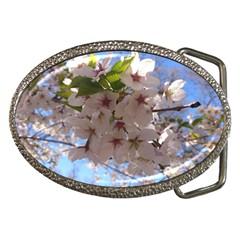 Sakura Belt Buckle (oval)