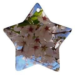 Sakura Star Ornament (two Sides)