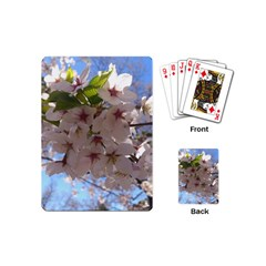 Sakura Playing Cards (mini)