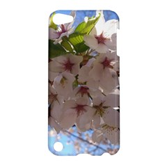 Sakura Apple Ipod Touch 5 Hardshell Case