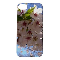 Sakura Apple iPhone 5S Hardshell Case