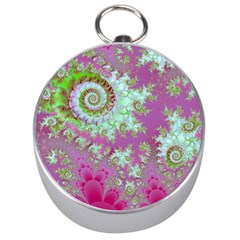 Raspberry Lime Surprise, Abstract Sea Garden  Silver Compass