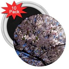 Sakura Tree 3  Button Magnet (10 pack)
