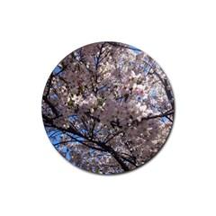 Sakura Tree Drink Coaster (Round)