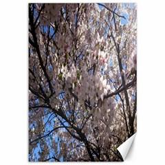 Sakura Tree Canvas 12  x 18  (Unframed)