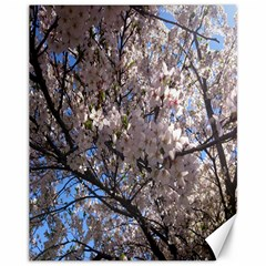 Sakura Tree Canvas 11  x 14  (Unframed)