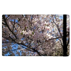 Sakura Tree Apple iPad 3/4 Flip Case