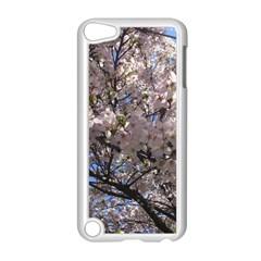 Sakura Tree Apple Ipod Touch 5 Case (white)