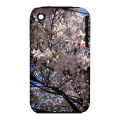 Sakura Tree Apple iPhone 3G/3GS Hardshell Case (PC+Silicone)