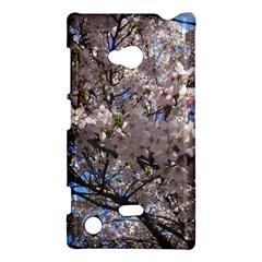 Sakura Tree Nokia Lumia 720 Hardshell Case