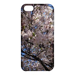 Sakura Tree Apple Iphone 5c Hardshell Case